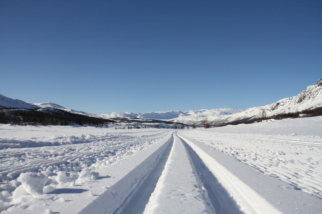 Где покататься на беговых лыжах в Норвегии