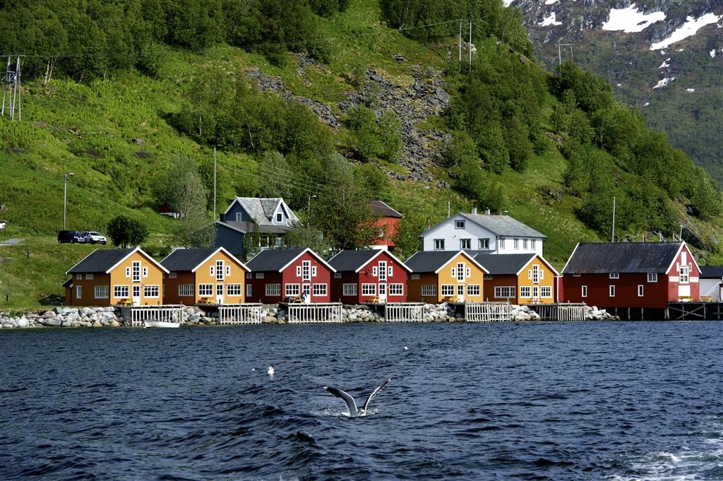 Как отдохнуть в Норвегии?