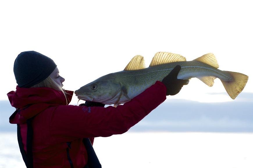Незабываемые впечатления от норвежской рыбалки