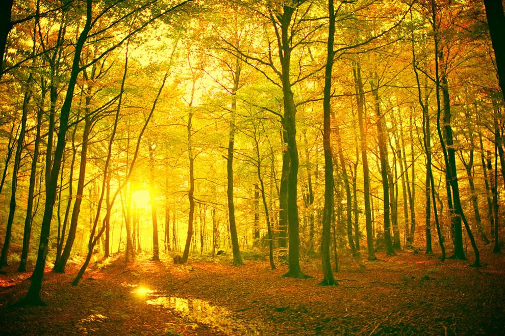 autumn-Norway