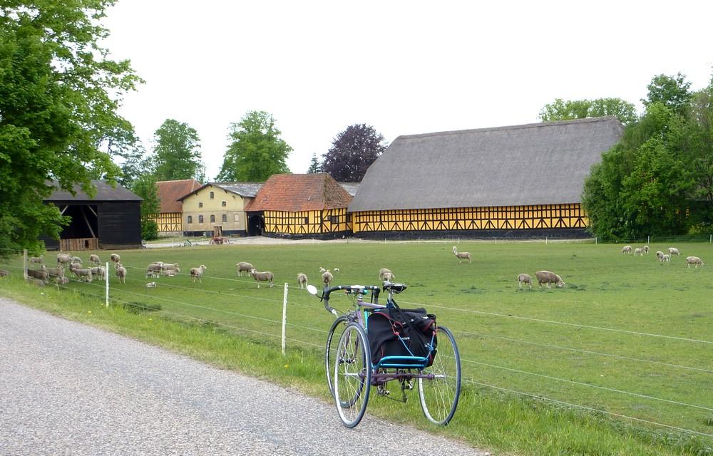 Все фермы Дании в телефоне