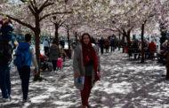 Ольга: «Строгая красота Стокгольма»